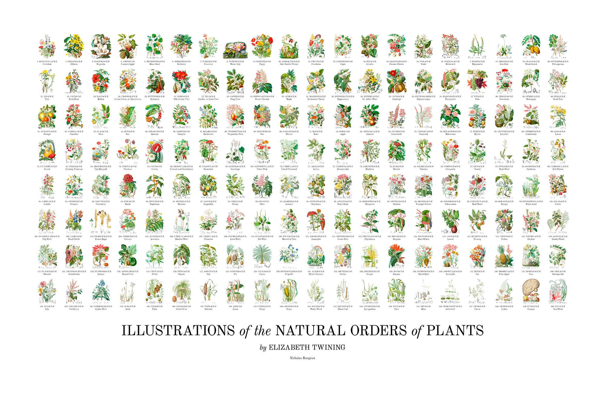 Poster of all 160 illustrations